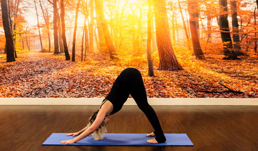 Image of woman doing downward dog yoga move
