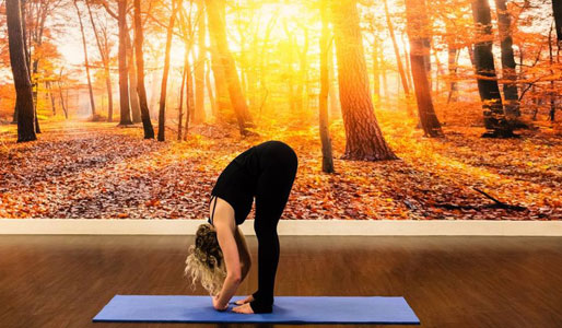 Image of woman doing forward fold yoga move