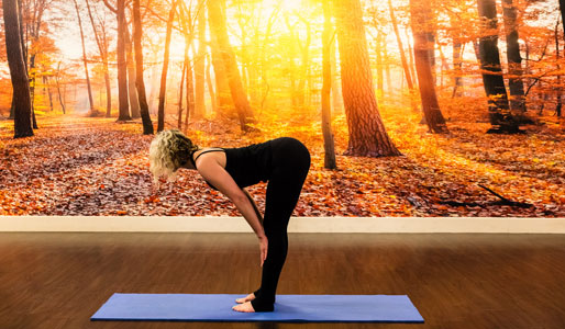 Image of woman doing halfway lift yoga move