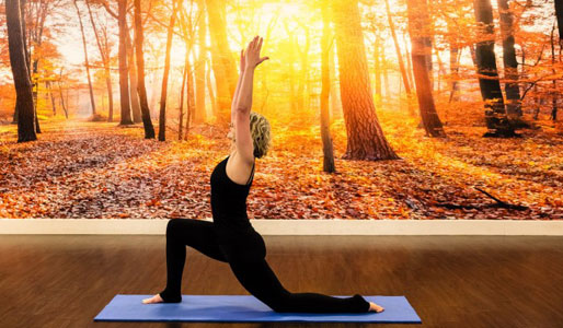 Image of lady doing low lunge yoga pose