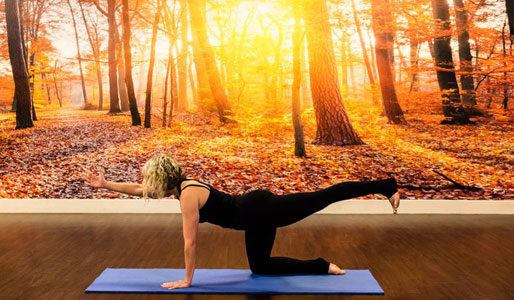 Image of woman doing extended plank move