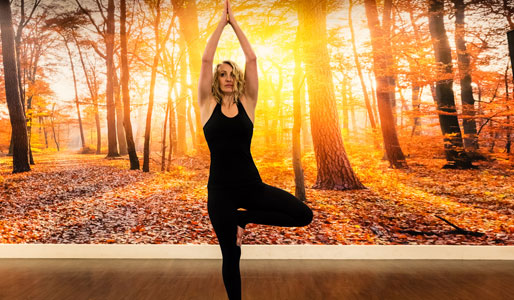 Image of woman doing tree pose yoga move