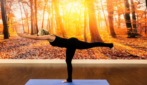 Image of lady in warrior yoga pose